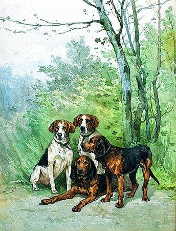 14: Olivier de PENNE (1831-1897) Chiens de chasse Aquar