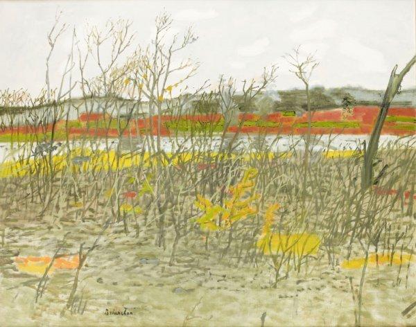 9: Maurice BRIANCHON (1899-1979) * L'étang de Gambais,