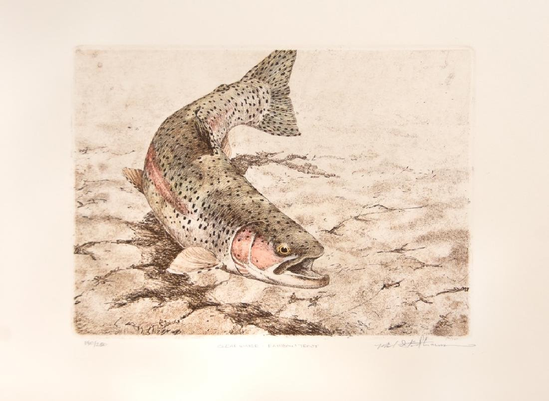 RAINBOW TROUT LITHOGRAPH 180/250 BY M. STIDHAM