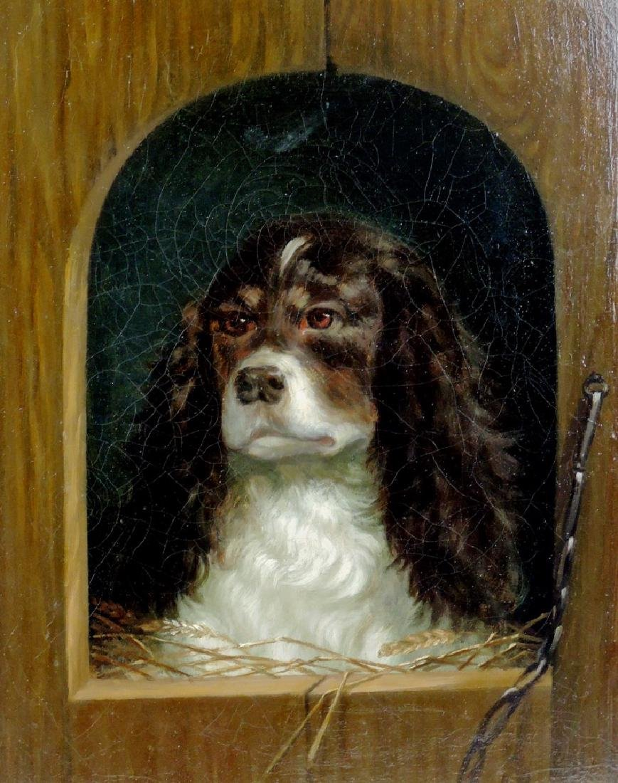 Spaniel in the Doghouse