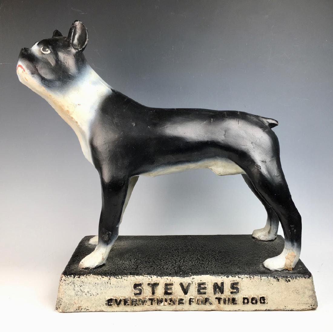 "Steven's ""Everything for the Dog"" Advertising"