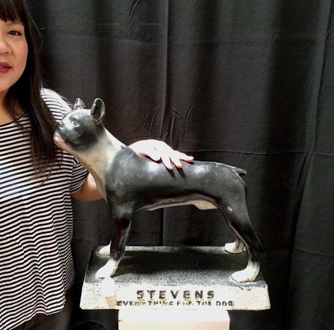 "Steven's ""Everything for the Dog"" Advertising - 4"