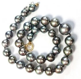Genuine Xlg 15-10mm Culture Black Tahitian Pearl Strand