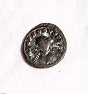 Probus AE antoninianus PAX AVG Roman Coin