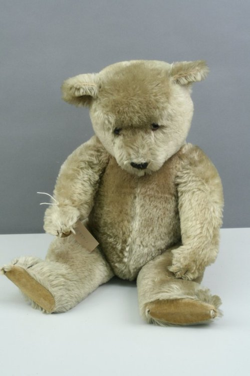9: A Chad Valley Teddy bear, 25in. - good condition