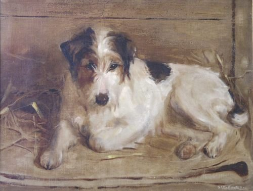 1838: Samuel Fulton (1855-1941) Fox terrier, 14 x 18 in