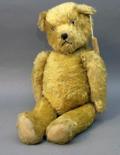17: An English Teddy bear, 24in.