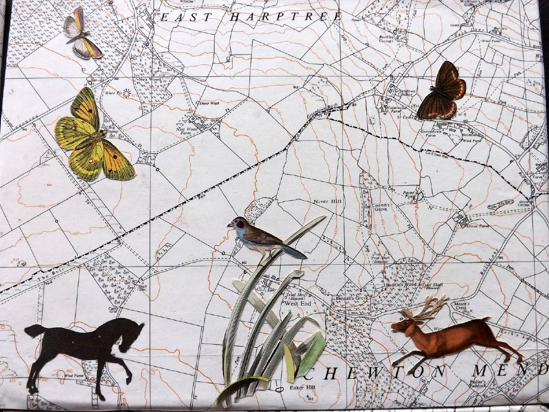 Decoupage C1880-1940 Set of 4. Natural History on Maps - 3