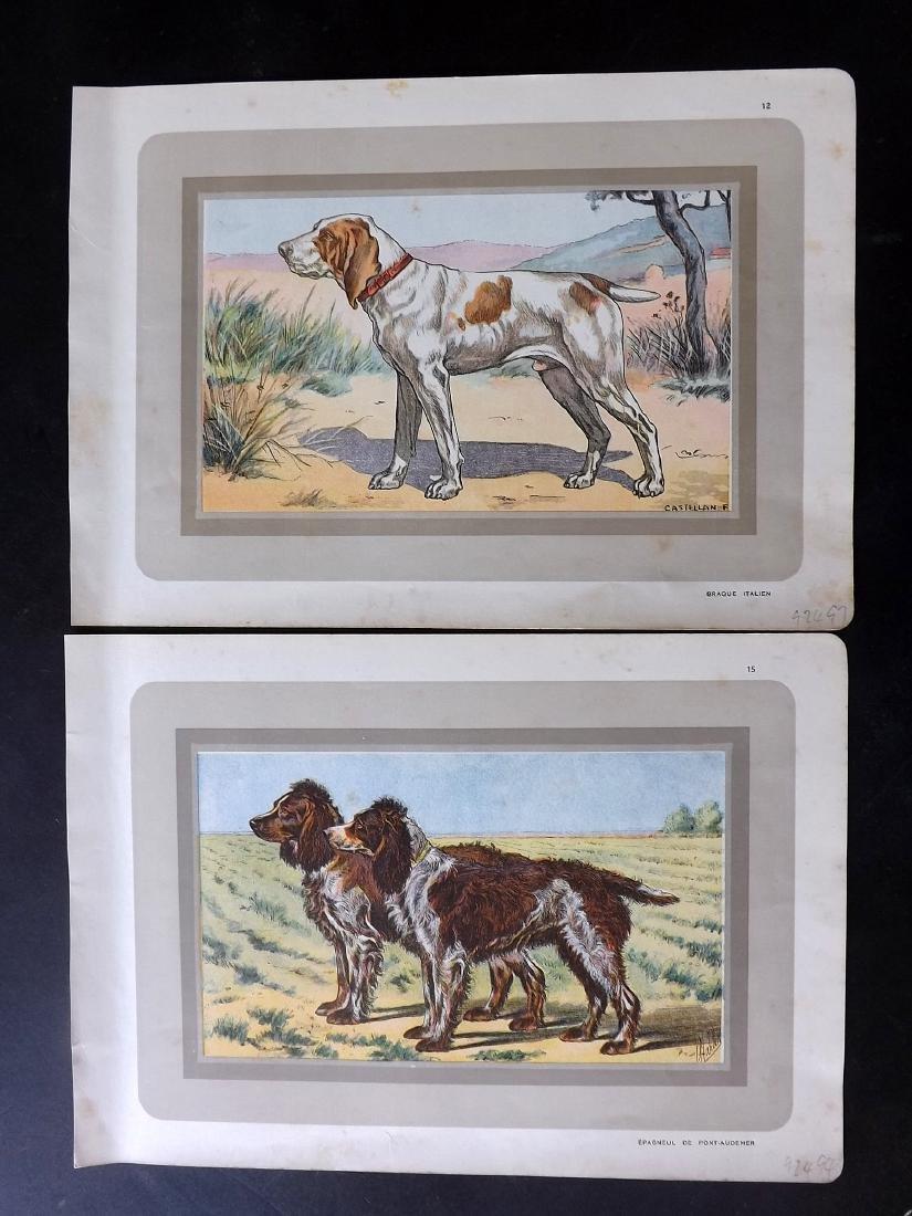 Mahler, P. 1931 Group of 6 Dog Prints - 2