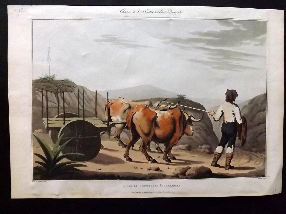 Bradford, William 1812 Hand Col Print. Portugal Ox Cart