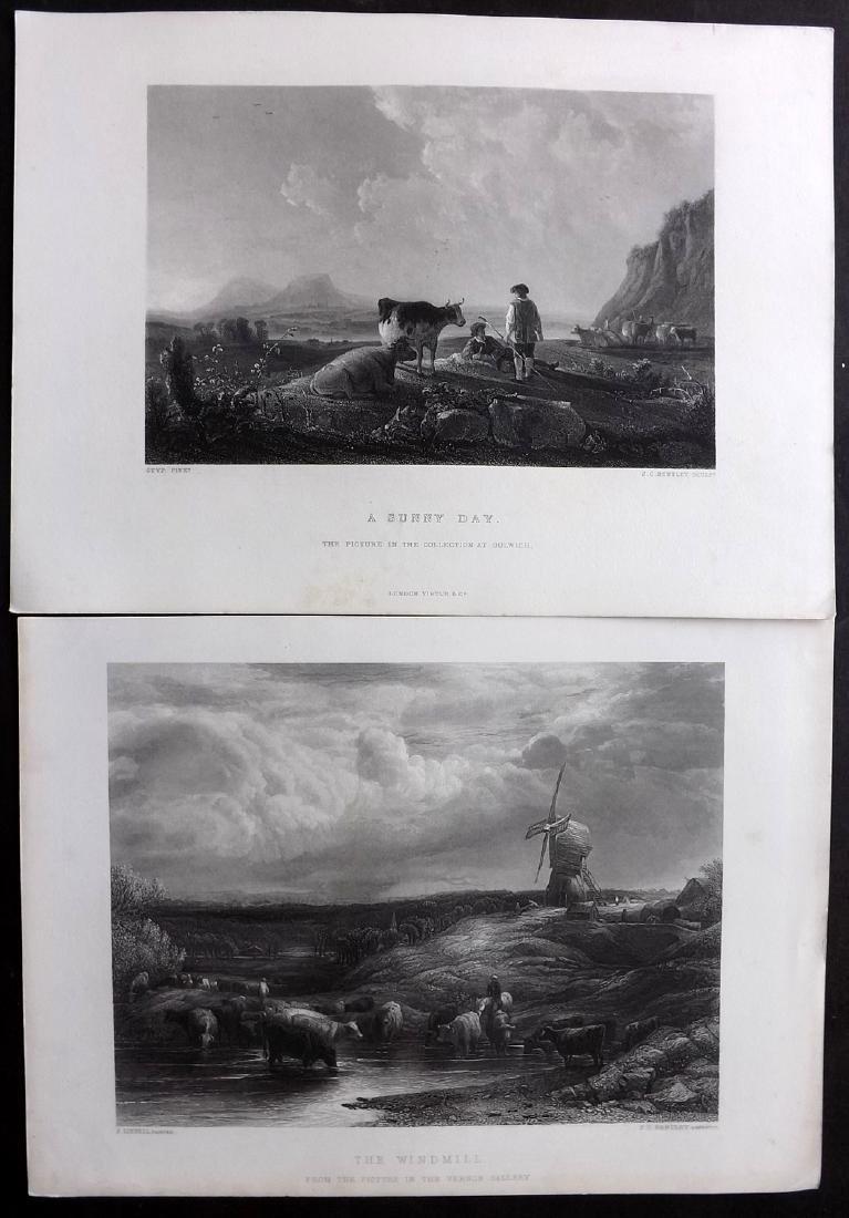 Art Journal C1860 Lot of 8 Steel Engravings. Animals - 2