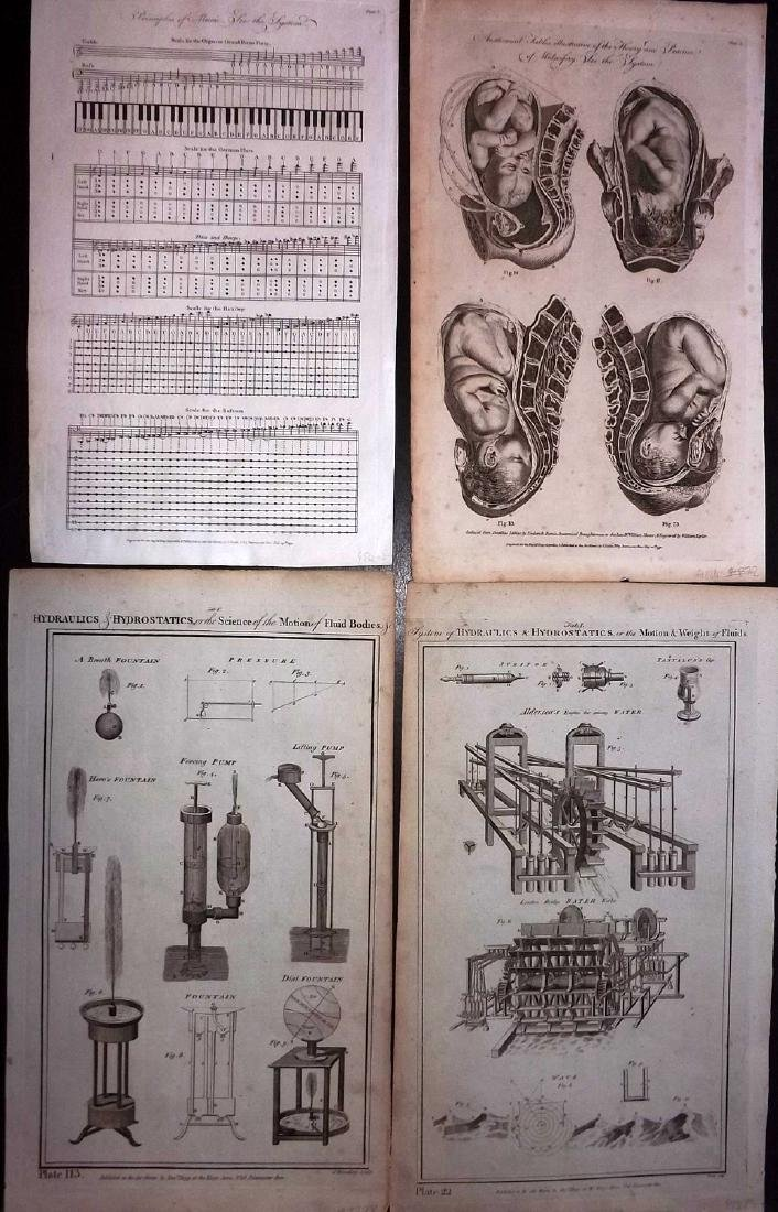 Science C1790 Copper Plates. Anatomy, Music (4)