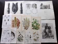 Mixed Prints 19th Century Lot of 25 Prints