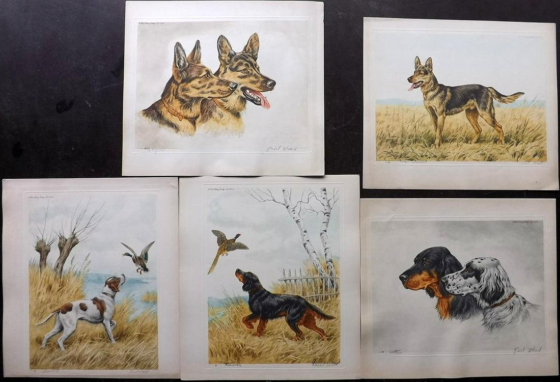 Wood, Paul C1935 Lot of 5 Signed Dog Etchings