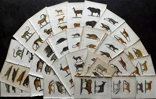 Buffon & Lacepede 1820 Lot of 48 HCol Animal Prints