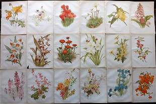 The Garden 1882-84 Lot of 18 Botanical Prints