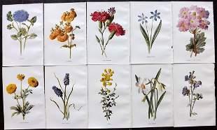 Hulme, Edward C1900 Lot of 10 Botanical Prints