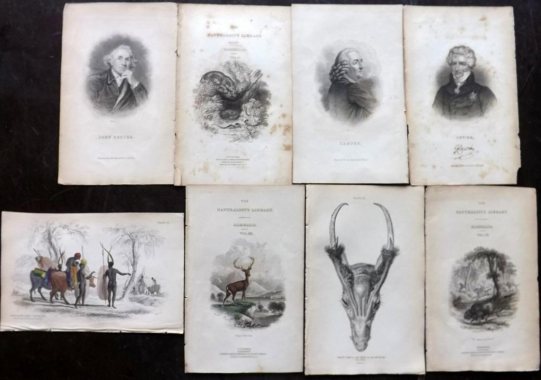 Jardine, William C1840 Mixed Lot of 8 Prints