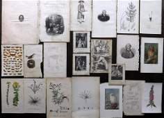 Mixed Prints 19th Cent. Lot of 20 Engravings & Lithos