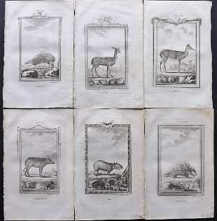 Buffon, Comte de 1785 Lot of 6 Animal Prints
