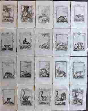 Buffon, Comte de 1785 Lot of 20 Animal Prints