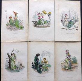 Grandville, J. J 1867 Lot of 6 Hand Col Botanical