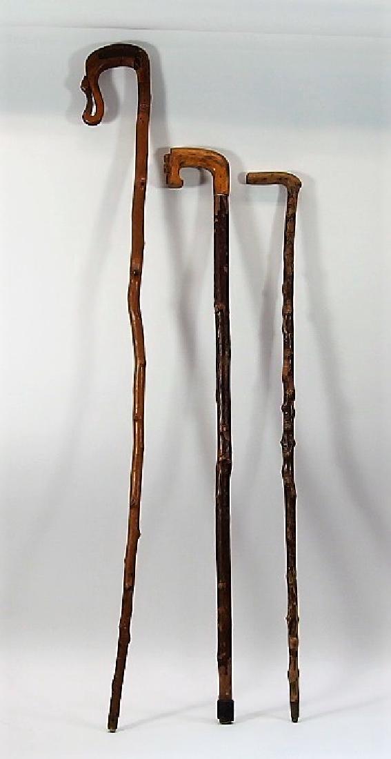 3 Irish Polished Blackthorn Walking Stick Canes - 3
