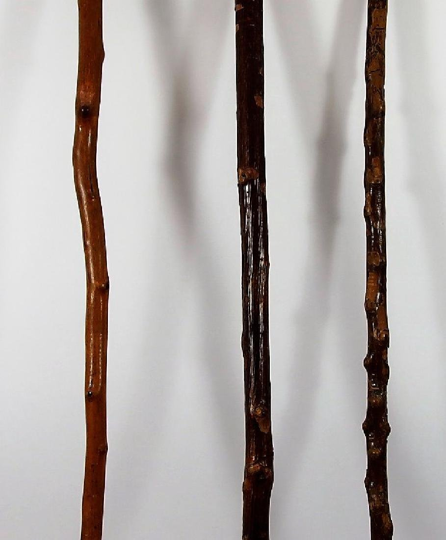 3 Irish Polished Blackthorn Walking Stick Canes - 4