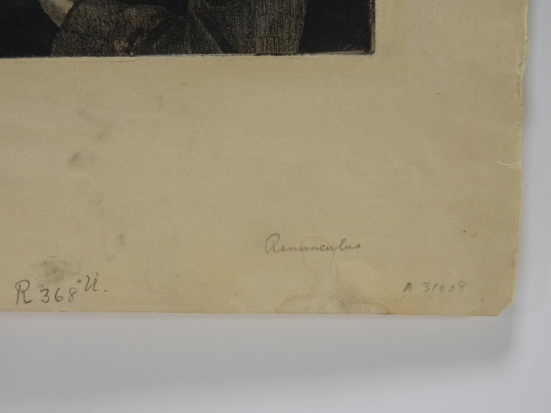 Gerald Brockhurst Titled Ranunculus Etching - 6