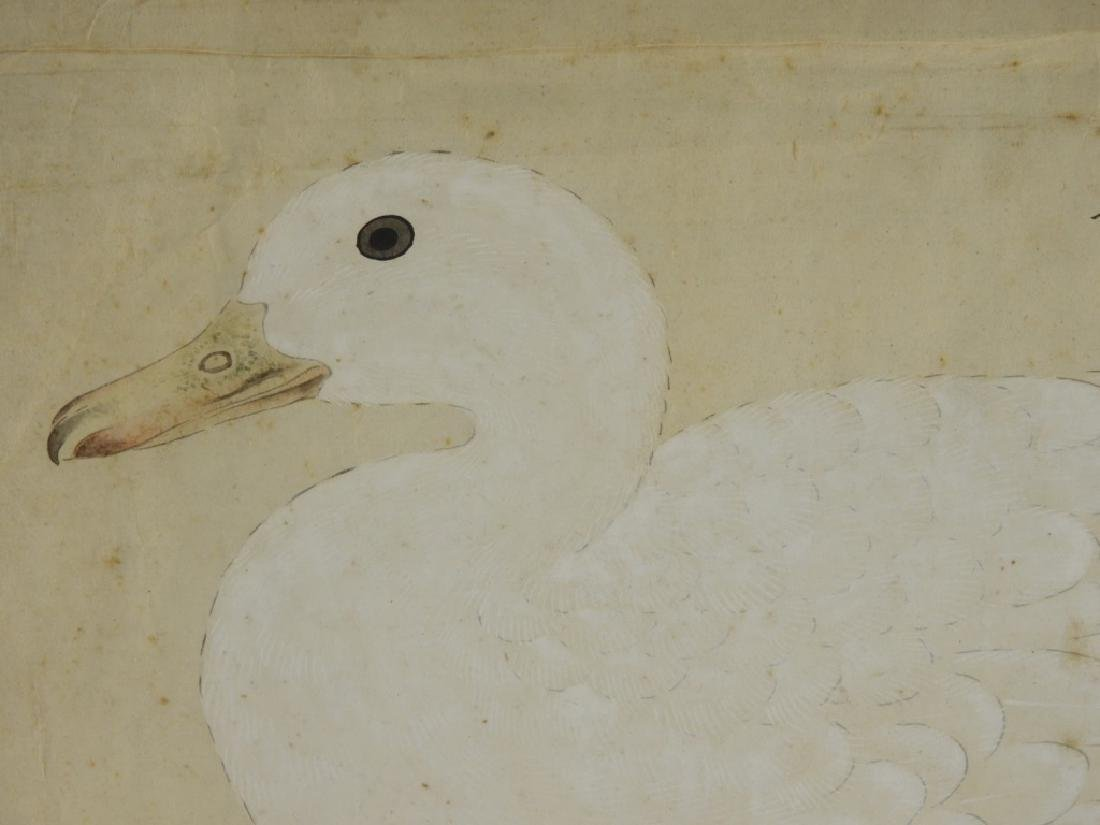 18C Chinese Watercolor Paper Peking Duck Painting - 2