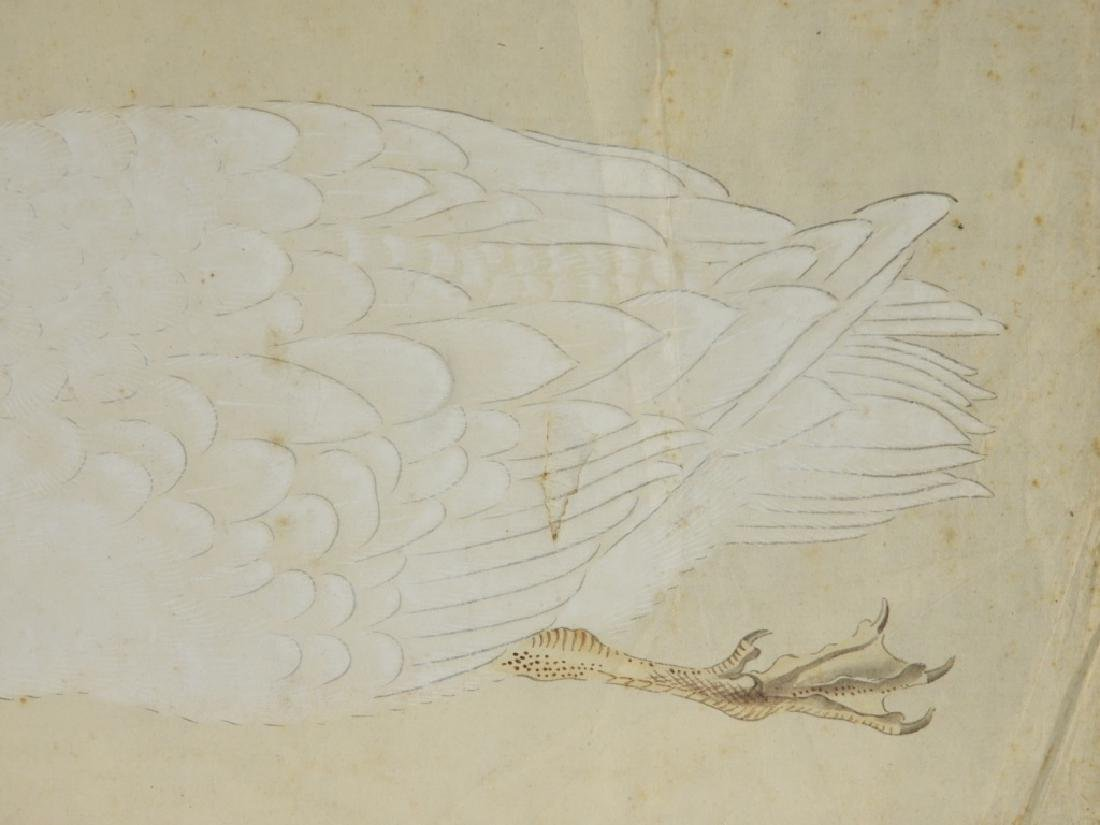 18C Chinese Watercolor Paper Peking Duck Painting - 3
