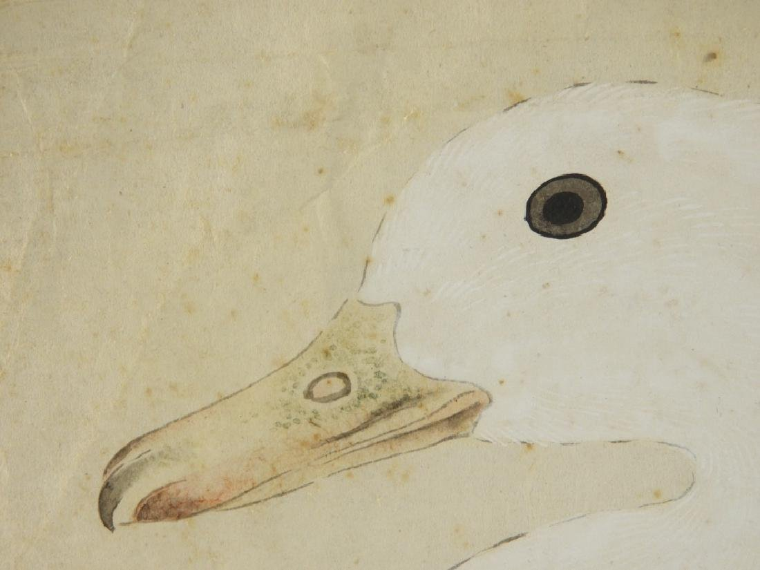 18C Chinese Watercolor Paper Peking Duck Painting - 6