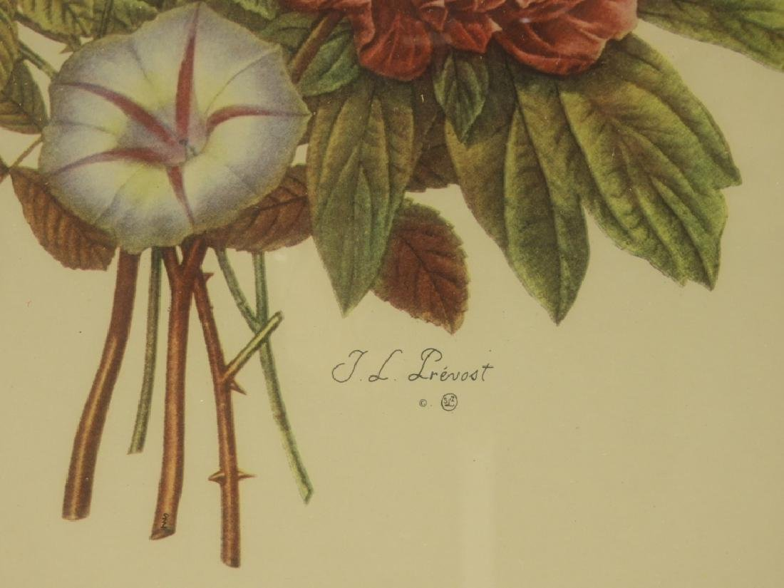 4 Prevost Decorative Floral Spray Botanical Prints - 7