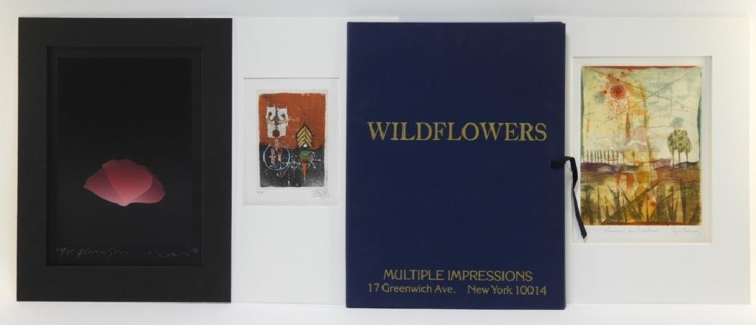 Multiple Impressions NY Wildflowers Portfolio