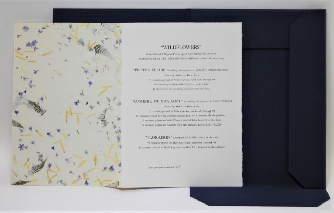 Multiple Impressions NY Wildflowers Portfolio - 2