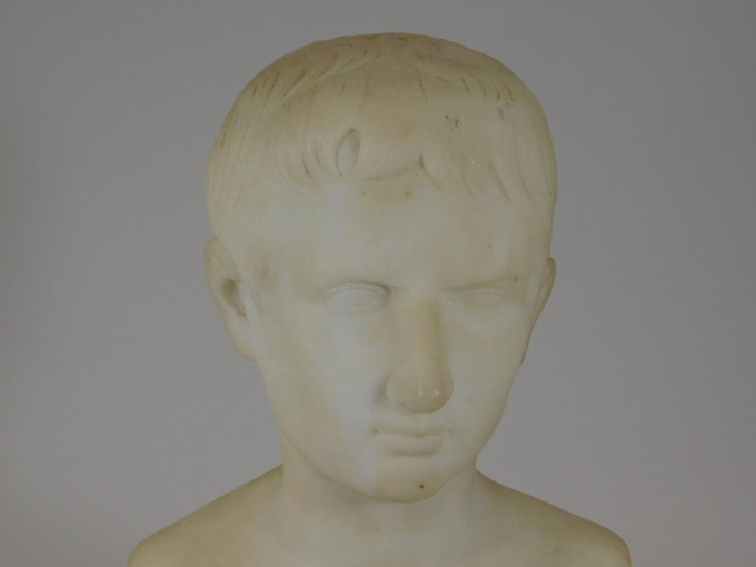 19C. Italian Grand Tour Young Augustus Marble Bust - 2