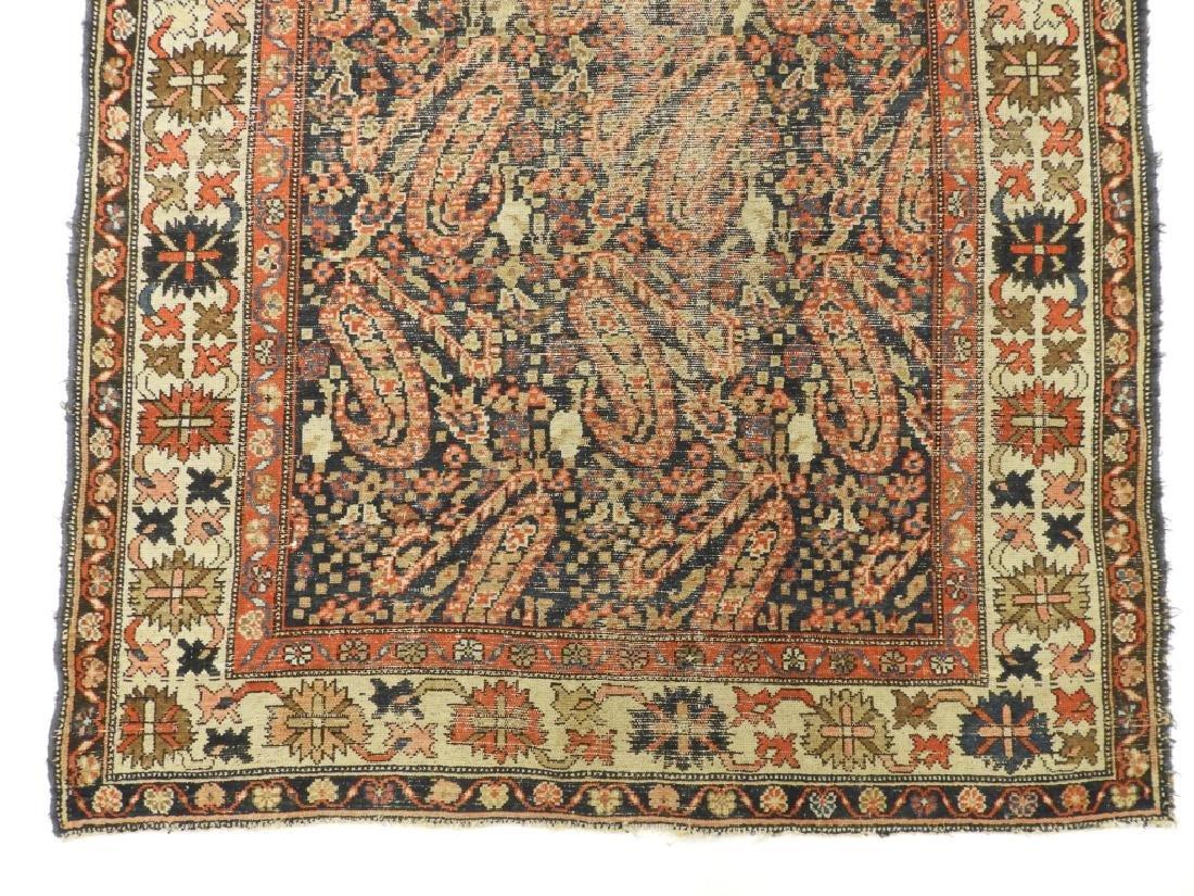 C.1900 Caucasian Oriental Malaya Carpet Rug - 2