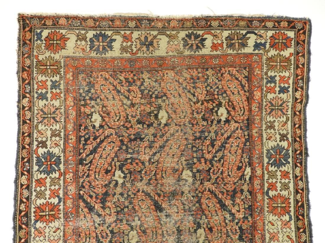 C.1900 Caucasian Oriental Malaya Carpet Rug - 4
