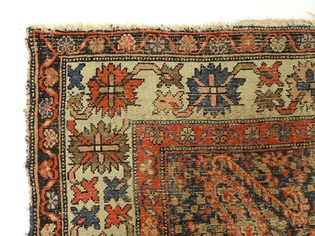 C.1900 Caucasian Oriental Malaya Carpet Rug - 5