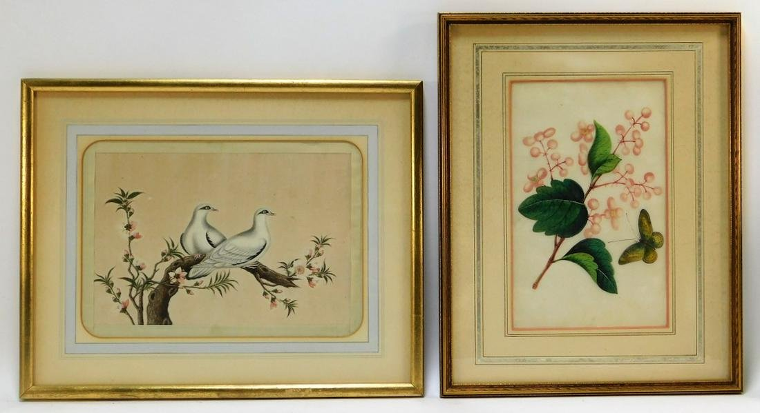 2PC 19C Chinese Botanical Avian Pith Paintings