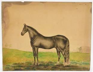 19C American Folk Art Prized Horse WC Painting
