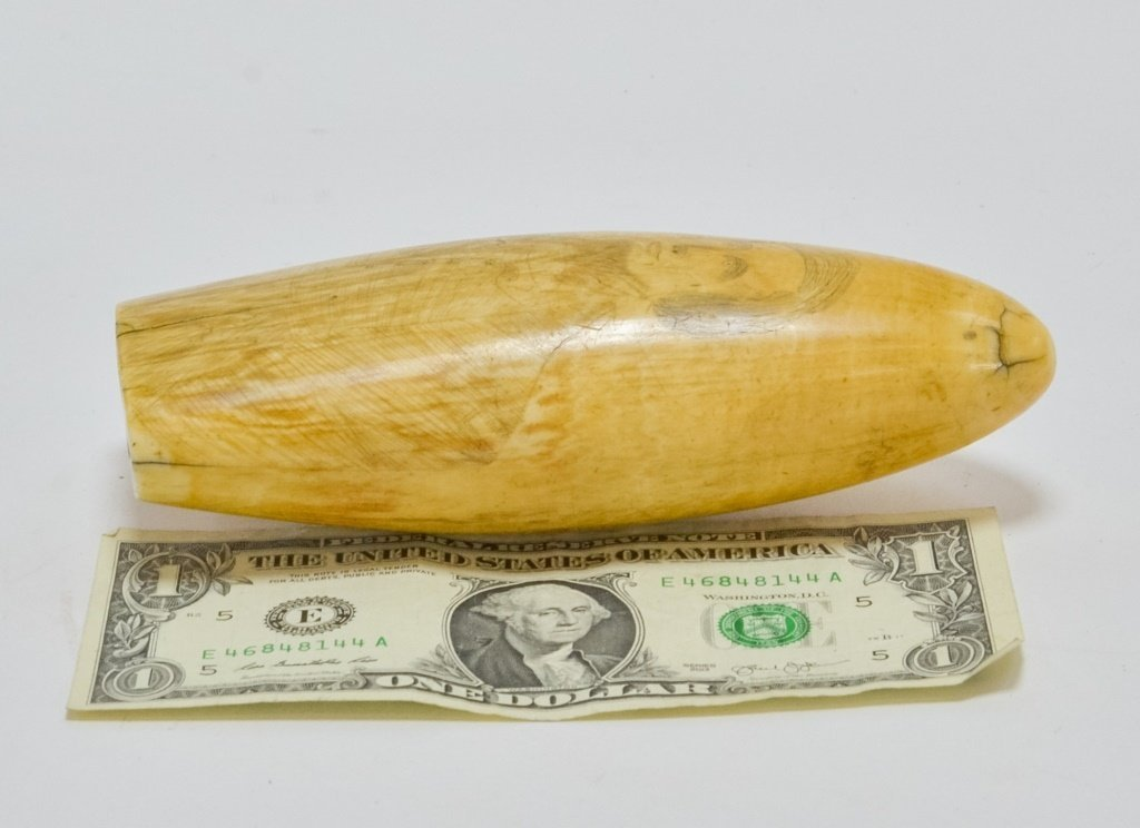 1860's Scrimshaw Civil War Soldier Whale Tooth - 7