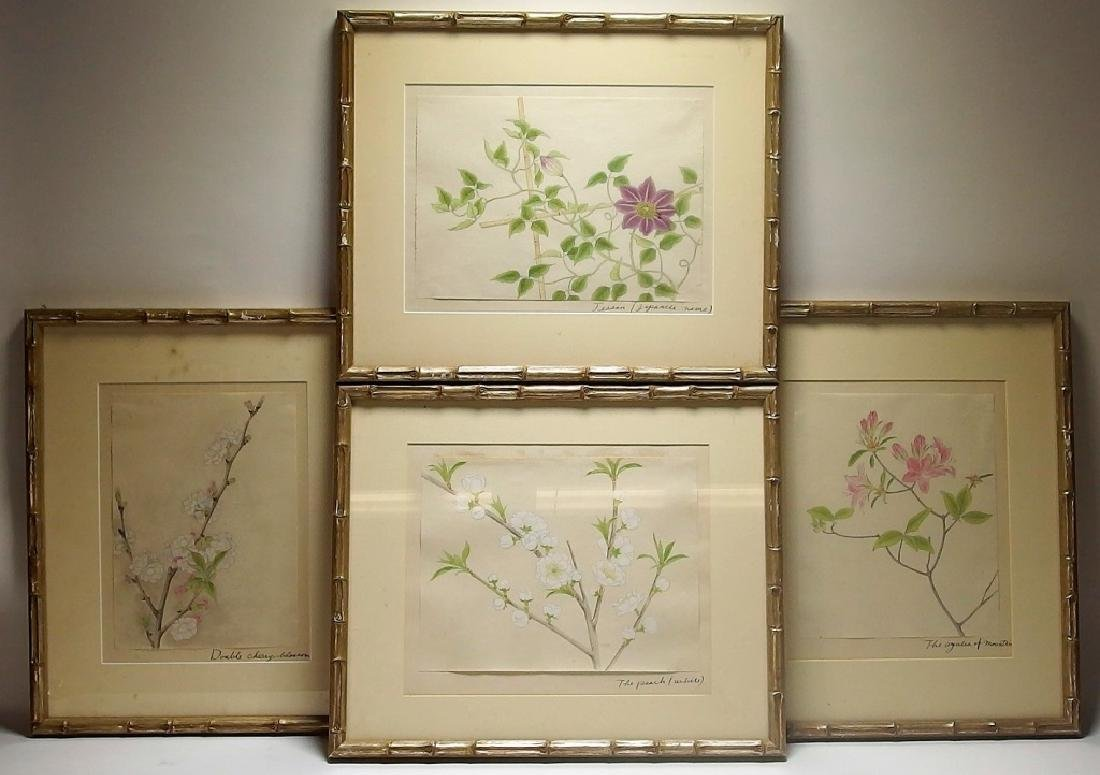 4 Chinese Floral Botanical Watercolor Paintings