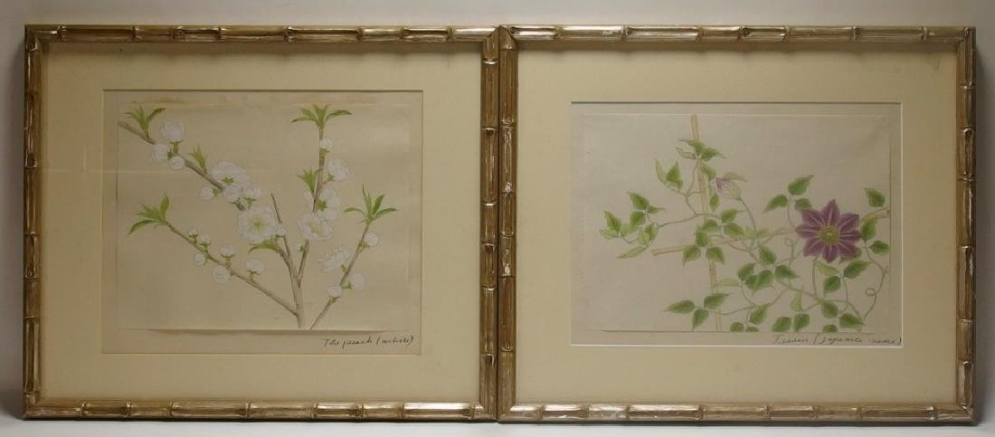4 Chinese Floral Botanical Watercolor Paintings - 2