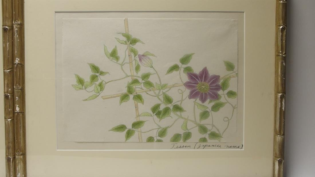 4 Chinese Floral Botanical Watercolor Paintings - 5