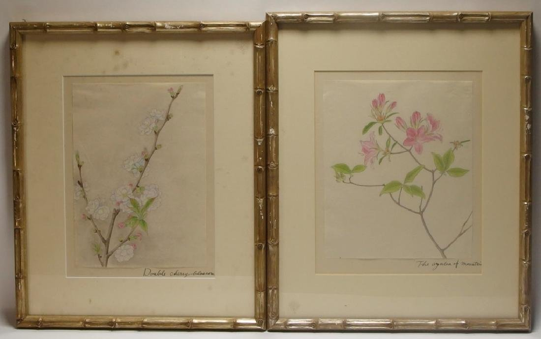4 Chinese Floral Botanical Watercolor Paintings - 7