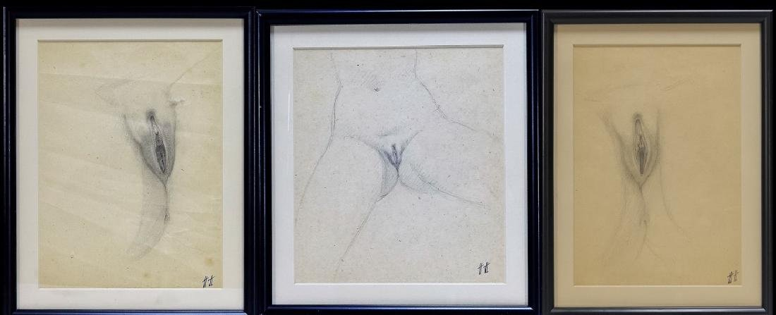 3 Hanns Haas Erotic Nude Female Genitalia Drawing