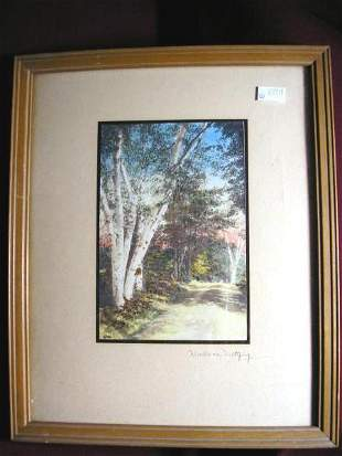 WALLACE NUTTING PRINT UNTITLED COUNTRY ROAD BIRCH TR