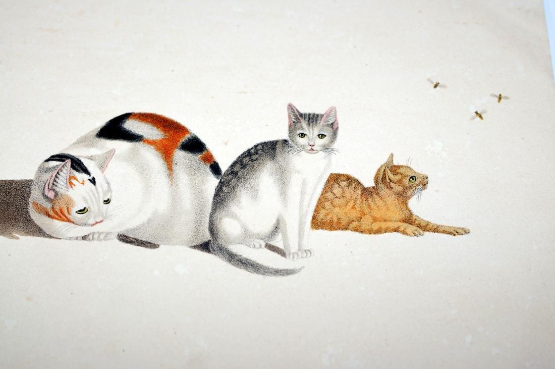 Lithograph Carl Reichert cats- bees - 3
