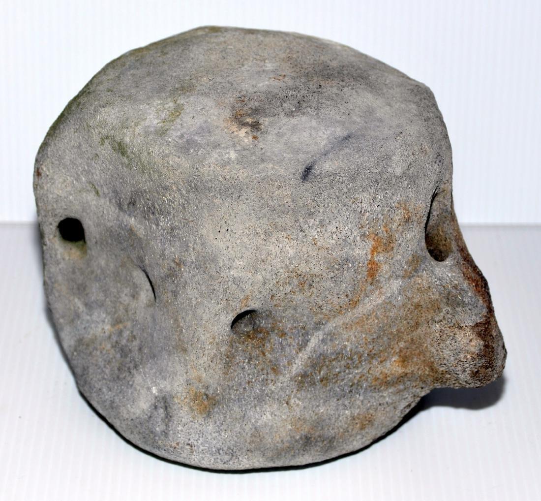 Whale vertebrae mineralized fossil